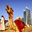 School Leisure & Tourism trip to Dubai