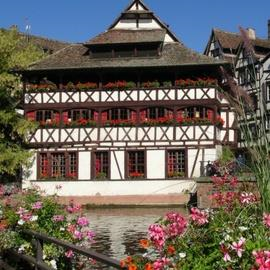 Guided Tour of Strasbourg