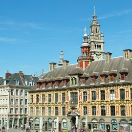 Guided Tour of Lille