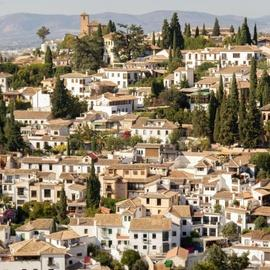 Guided Walking Tour of Granada