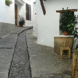 Excursion to the Alpujarras