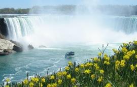 Oakes Gardens Niagara Falls