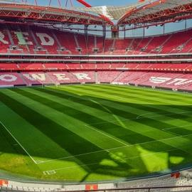 Estadio da Luz Tour