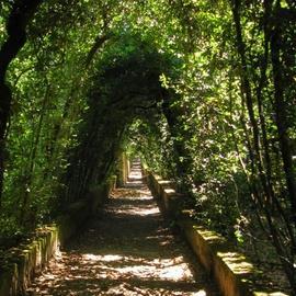 The Boboli Gardens (Giardino di Boboli)